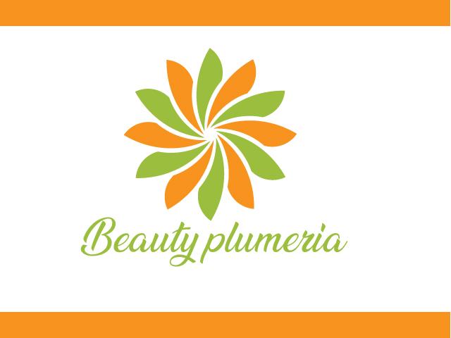 Beauty plumeria logo flowers design vector